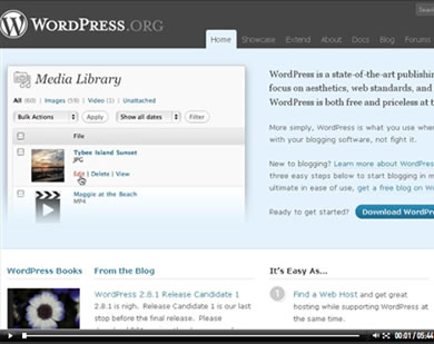Wordpress How to Videos make learning wordpress easy!