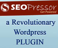 Wordpress SEO Plugin called SEOPressor
